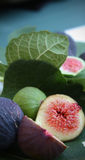 Figs. An arrangement of figs and fig leaves, from my garden. Enjoy royalty free stock images