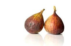 figs Royaltyfria Bilder