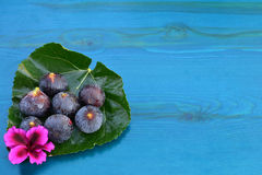 Figs and blue wood background Stock Photo