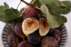 Figs In A Bowl stock image