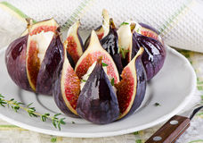Figs with cheese Royalty Free Stock Image
