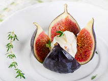 Figs with cheese Royalty Free Stock Photo