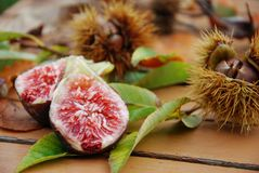 Figs and chestnuts Royalty Free Stock Photography