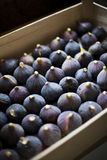 Figs in a crate Royalty Free Stock Images
