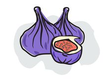 Figs in doodle style, isolated Royalty Free Stock Photo