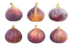 Figs. Path isolated on white stock image