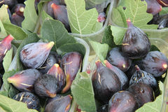 Figs at a French market Stock Photography