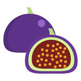 Figs fresh juicy summer fruit icon, vector illustration Stock Image
