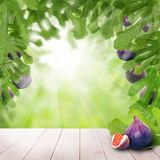 Figs fruit, green leaves and white empty wooden table. With copy space on abstract background Stock Photo