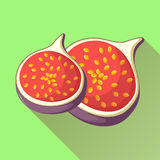 Figs fruit icon with long shadow. Healthy eating, fresh exotic fruits. Food rich in calcium. Vector illustration in flat style Stock Photos