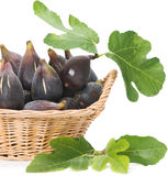 Figs fruits with leaves in a basket Stock Photo