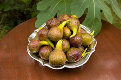 Figs in garden Royalty Free Stock Photo