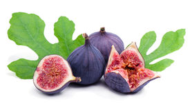 Figs and green leaves. Some juicy figs and green leaves isolated on white Royalty Free Stock Image