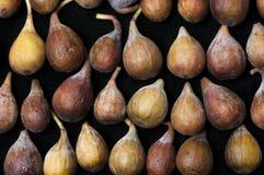 Figs i en rad Arkivfoto