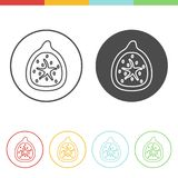 Figs  icons in thin line style. Vector set of figs icons in thin line style Royalty Free Stock Photo