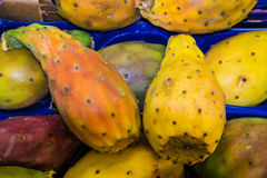 FIGS OF INDIA. IN YELLOW AND ORANGE BOX,FICHI DI INDIA IN CASSETTA GIALLO E ARANCIONE Stock Photos