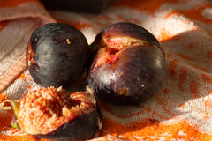 Figs isolated.  Violet fruits of Fícus carica Royalty Free Stock Images