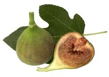 Figs - isolated on white. Fruits of fig - tree isolated on white background Stock Photography