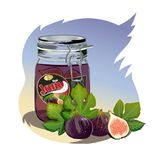 Figs jam in the jar. Isolated image Stock Photo