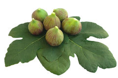 Figs and leaves. Some figs and leaves isolated on white background Royalty Free Stock Photography