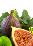 figs and leaves Stock Photos