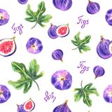 Figs leaves seamless watercolor pattern royalty free illustration