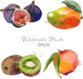 Figs, mango, kiwi, peach Royalty Free Stock Photography