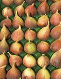 Figs at the market. An array of red figs at the fruit market stock image