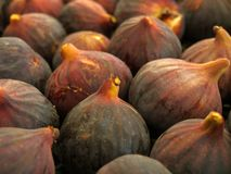 Figs on Market Stall. Fresh ripe figs displayed on a market stall royalty free stock photos
