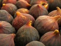 Figs marknadsför på stallen Royaltyfria Foton