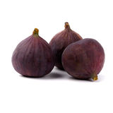 figs nya tre royaltyfri fotografi