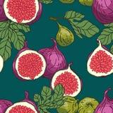 Figs pattern Stock Photography