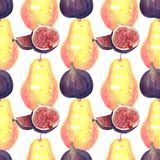 Figs and pear watercolor pattern on white vector illustration