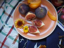 Figs on plate. Ripe figs on orange plate royalty free stock images