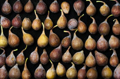 Figs in a Row. Close-up of fresh figs in rows on a black background Stock Images