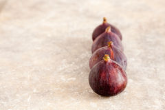 Figs in a row Stock Photography