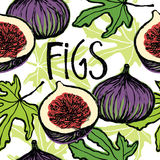 Figs seamless pattern Royalty Free Stock Photography