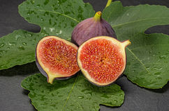 Figs on slate plate Stock Photography
