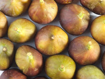 Figs Royalty Free Stock Image