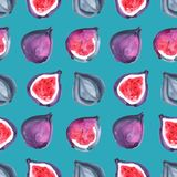 Figs. Tropical pattern of exotic fruit. Watercolor Seamless background. Figs. Watercolor hand painted illustration with exotic fruits. Seamless background Stock Photography