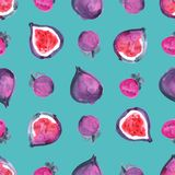 Figs. Tropical pattern of exotic fruit. Watercolor Seamless background. Figs. Watercolor hand painted illustration with exotic fruits. Seamless background Stock Photo