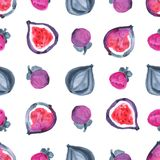 Figs. Tropical pattern of exotic fruit. Watercolor Seamless background. Figs. Watercolor hand painted illustration with exotic fruits. Seamless background Royalty Free Stock Photos