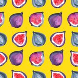 Figs. Tropical pattern of exotic fruit. Watercolor Seamless background. Figs. Watercolor hand painted illustration with exotic fruits. Seamless background Royalty Free Stock Photography