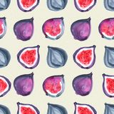 Figs. Tropical pattern of exotic fruit. Watercolor Seamless background. Figs. Watercolor hand painted illustration with exotic fruits. Seamless background Stock Image