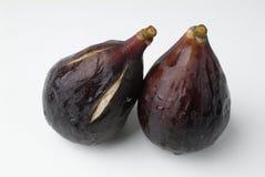figspar Royaltyfria Foton