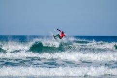 Vasco Ribeiro foto de stock