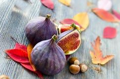 Figues, écrous et feuilles d'automne Image libre de droits