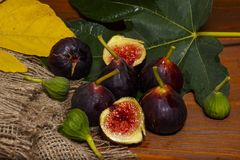 Figues douces mûres avec les feuilles vertes Figues méditerranéennes saines de figue Photos stock