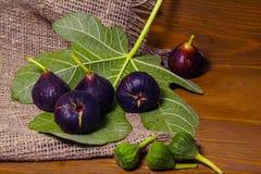 Figues douces mûres avec les feuilles vertes Figues méditerranéennes saines de figue Photos libres de droits