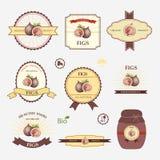 Figues, ensemble de conception de label Photo stock